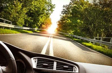 Voiture vue du cockpit sur une route entourée d'arbres